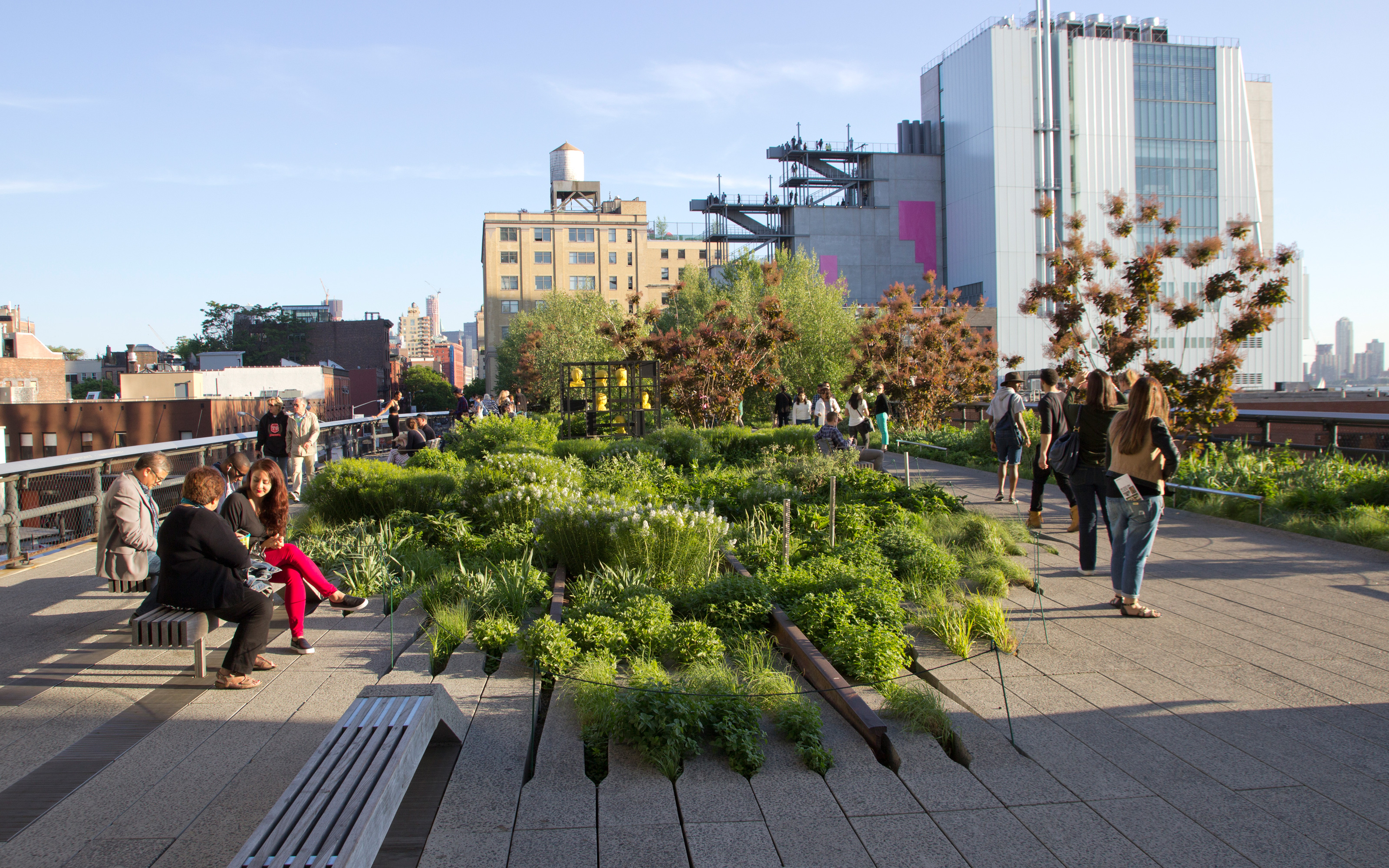 The High Line with walkways and vegetated rails