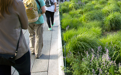 Walkways on Roofs and Plaza Decks   ZinCo Green Roof Systems USA