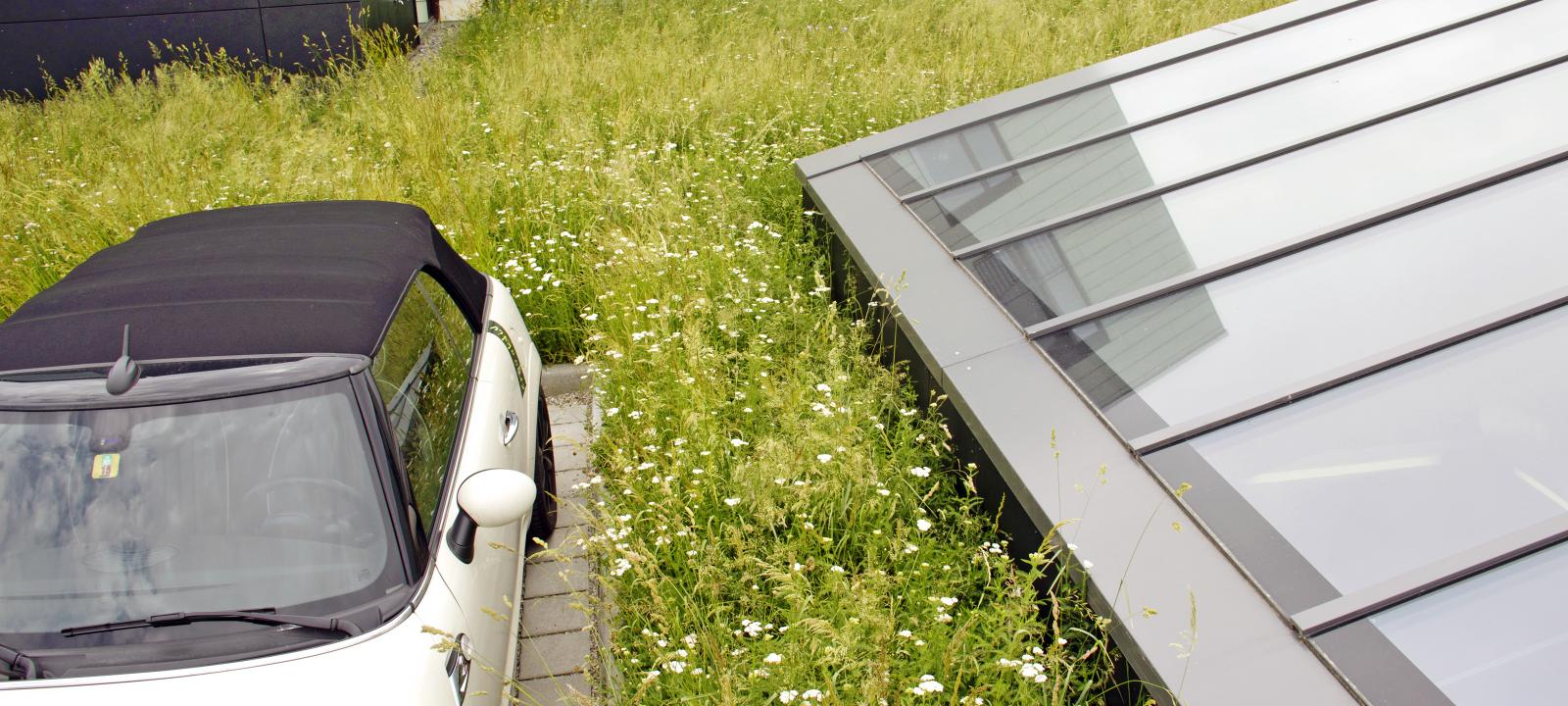 Hybrid Green Roofs | ZinCo Green Roof Systems USA
