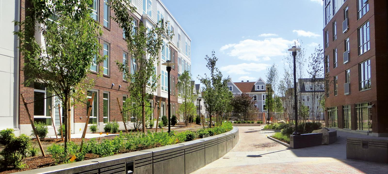 Courtyard with plant beds and small trees surrounded by residential buildings