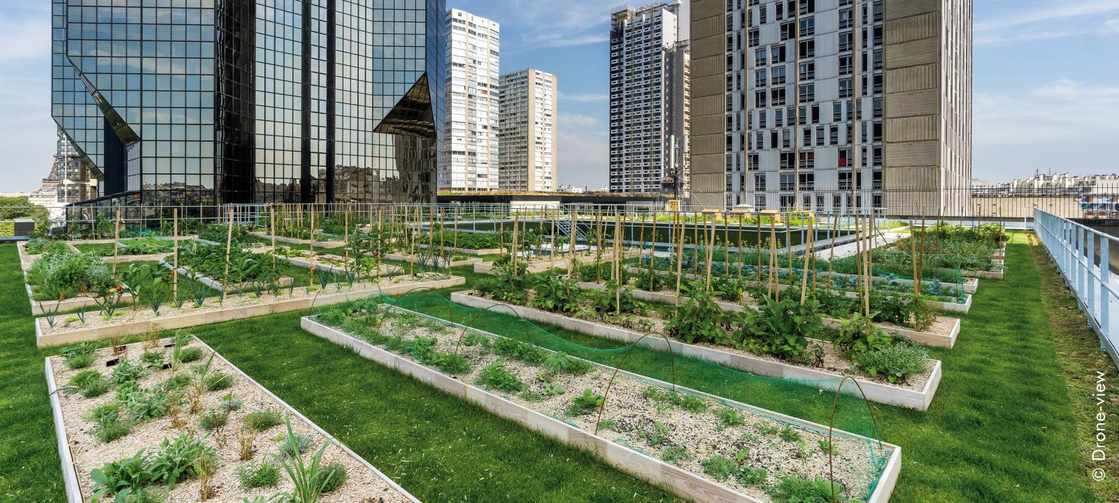 Urban Rooftop Farming Zinco Green Roof Systems Usa