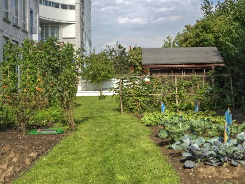 Roof garden with lawn and vegetable patches