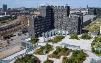 Green roof with walkways and plant beds in the city