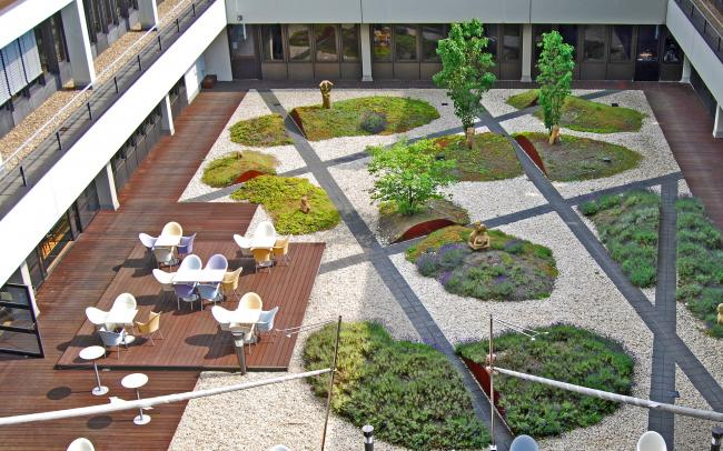Courtyard with wooden deck, seating, gravel and plantbeds